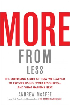 More from Less : The Surprising Story of How We Learned to Prosper Using Fewer Resources--And What Happens Next