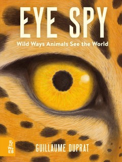 Eye spy : wild ways animals see the world