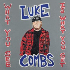 What you see is what you get / Luke Combs.