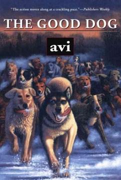The good dog Avi.