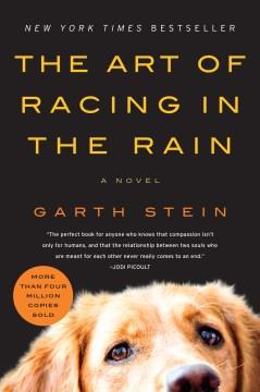 Art of Racing in the Rain – Garth Stein