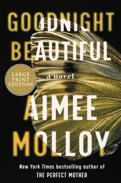 Goodnight beautiful : a novel Aimee Molloy