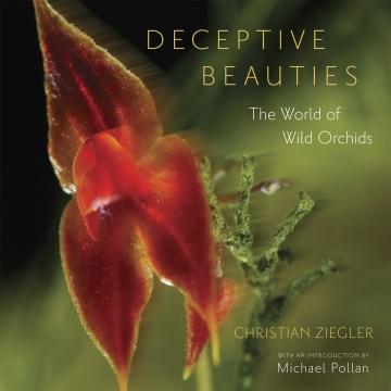 Bellezas engañosas, portada del libro