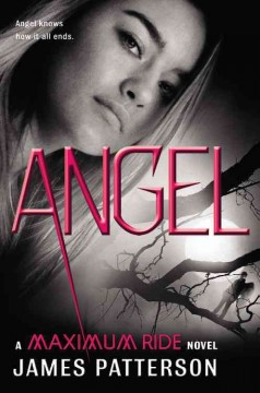 Angel by James Patterson.