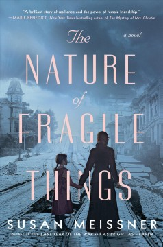 The nature of fragile things / Susan Meissner.