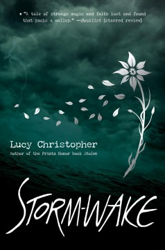 Storm Wake by Lucy Christopher
