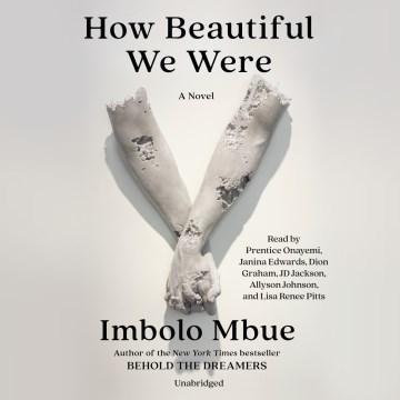 How beautiful we were / Imbolo Mbue.