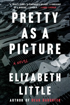 Pretty as a picture : a novel / Elizabeth Little.
