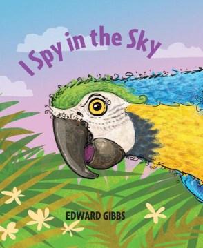 I spy in the sky, book cover