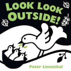 Look look outside! / Peter Linenthal.