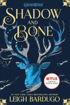Shadow and Bone, book cover