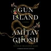 Gun island : a novel / Amitav Ghosh.