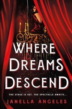 Where Dreams Descend, portada del libro
