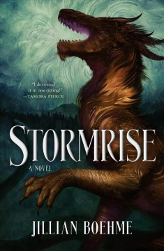 Stormrise, book cover