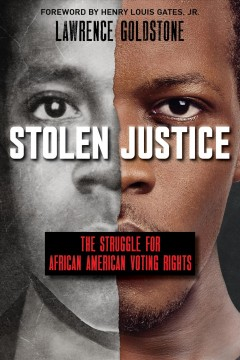 Stolen justice: the struggle for African-American voting rights / Lawrence Goldstone