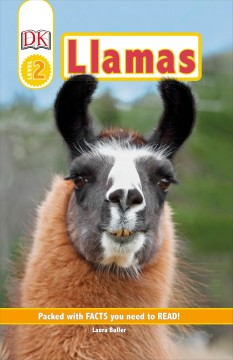 Llamas: Packed With Facts You Need to Read!