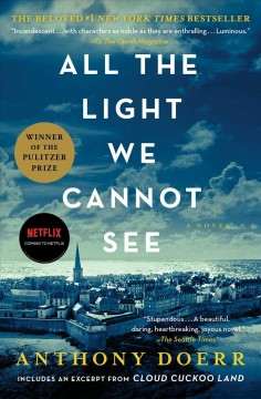 Book cover of a European City with a blue filter. Text reads All the Light we Cannot See by Anthony Doerr