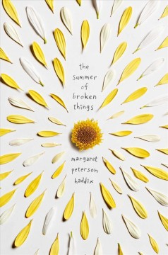 The Summer of Broken Things, book cover