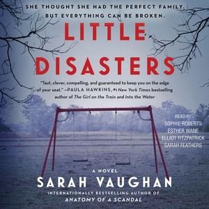 Little disasters : a novel / Sarah Vaughan.