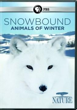 Snowbound : animals of winter