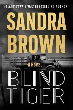 Blind tiger by Sandra Brown.