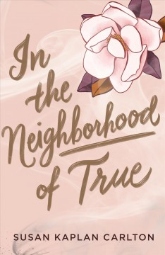 In the Neighborhood of True, book cover