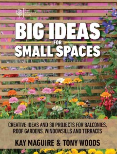 Big Ideas for Small Spaces, book cover