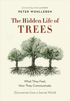 Hidden Life of Trees – Peter Wohlleben