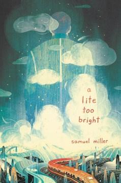 A Lite Too Bright book cover