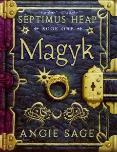 Septimus Heap series by Angie Sage