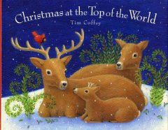 Christmas at the top of the world / written and illustrated by Tim Coffey.