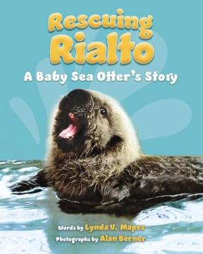 Rescuing Rialto : a baby sea otter