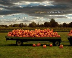 Pumpkins / by Ken Robbins.