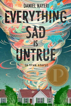 Everything sad is untrue : (a true story) / Daniel Nayeri.