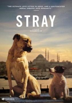 Stray / Magnolia Pictures ; produced by Elizabeth Lo & Shane Boris ; directed by Elizabeth Lo.