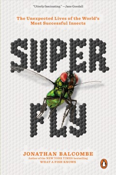 Super fly : the unexpected lives of the world
