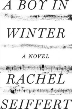 A boy in winter / Rachel Seiffert.