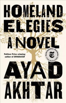 Homeland elegies : a novel / Ayad Akhtar.