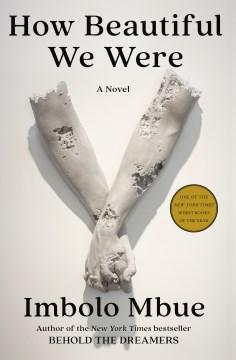 How beautiful we were: a novel / Imbolo Mbue.