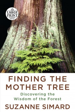Finding the mother tree : discovering the wisdom of the forest / Suzanne Simard.