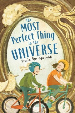 The most perfect thing in the universe / Tricia Springstubb.