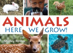 Animals : here we grow! / Shelley Rotner.