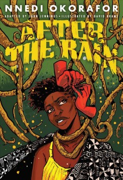 After the rain / written by John Jennings ; illustrated by David Brame ; lettering by Damian Duffy.