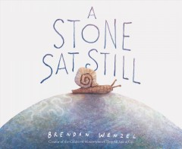 A stone sat still / Brendan Wenzel.