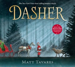 Dasher / Matt Tavares.