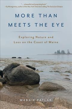 More than meets the eye : exploring nature and loss on the coast of Maine / Margie Patlak.