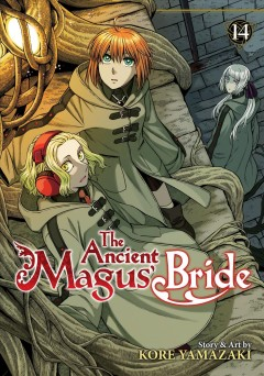 the ancient magus bride volume 14