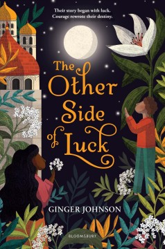 The other side of luck / by Ginger Johnson.