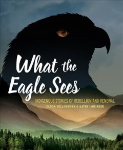 What the eagle sees : Indigenous stories of rebellion and renewal / Eldon Yellowhorn & Kathy Lowinger.