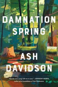 Damnation spring : a novel / Ash Davidson.